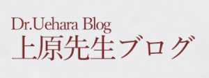 ueharablog-mini